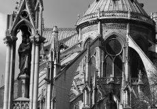 Notre-Dame de Paris : après la stupéfaction viendra le temps de la reconstruction
